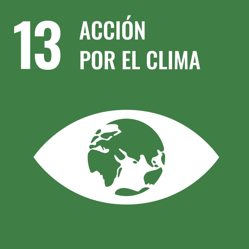 Icono del Objetivo de Desarrollo Sostenible Acción por el clima