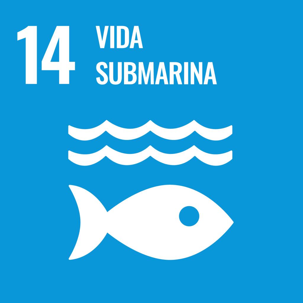 Icono del Objetivo de Desarrollo Sostenible Vida submarina
