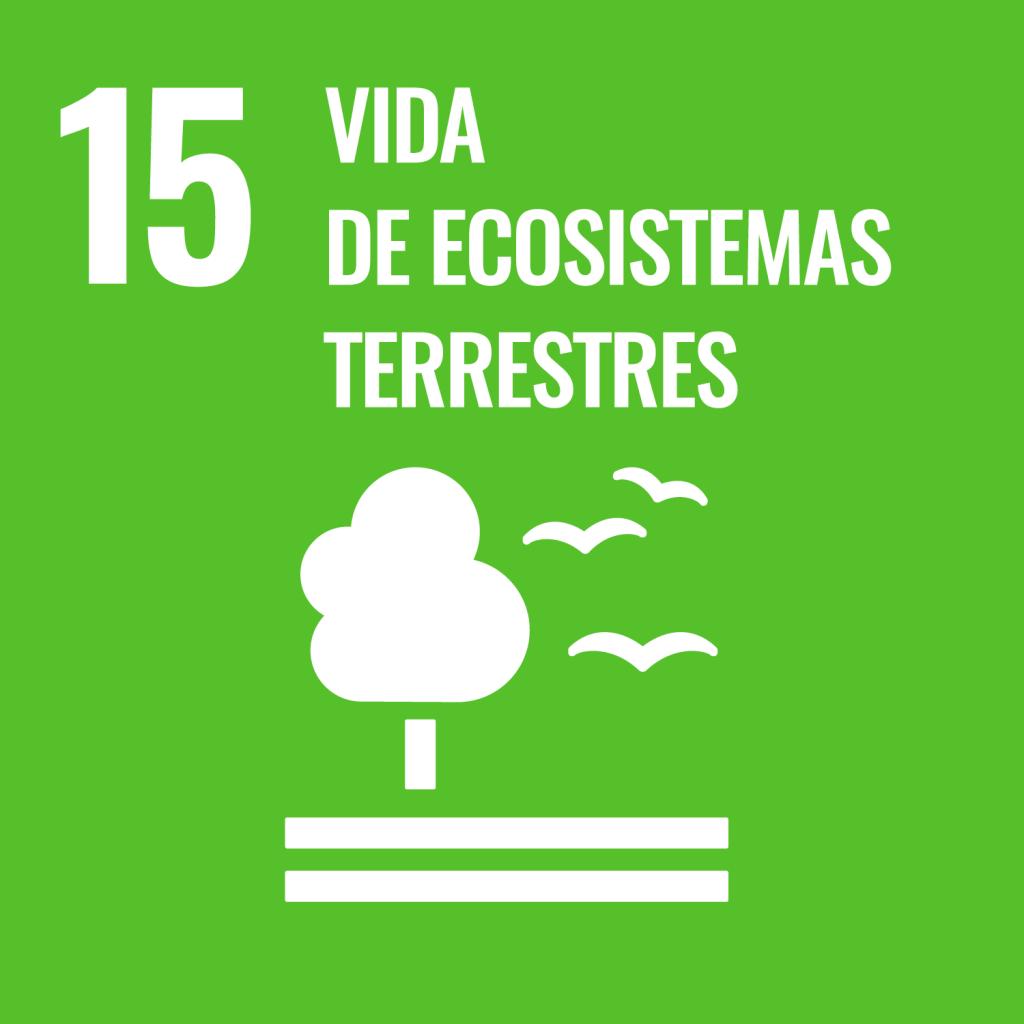 Icono del Objetivo de Desarrollo Sostenible Vida y ecosistemas terrestres