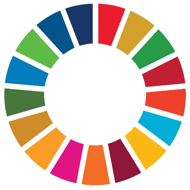 Icono Objetivos de Desarrollo Sostenible