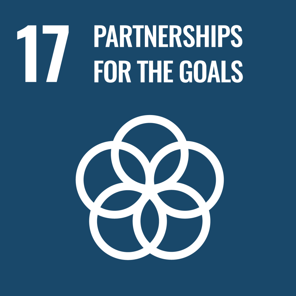 Icon for the Sustainable Development Goal Partnerships for the goals